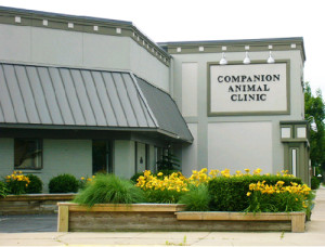Companion Animal Clinic Tecumseh MI